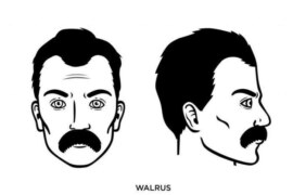 The Walrus Mustache – Famous Walrus Mustache Style: How to Grow, Guide, Examples, and More!